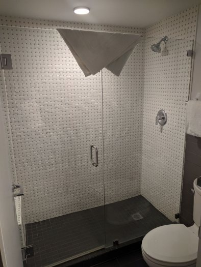 Shower in a Standard King Room at the El Vado Motel in Albuquerque