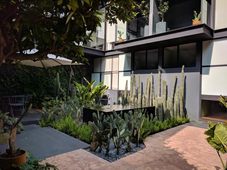 Ignacia-Mexico-Courtyard