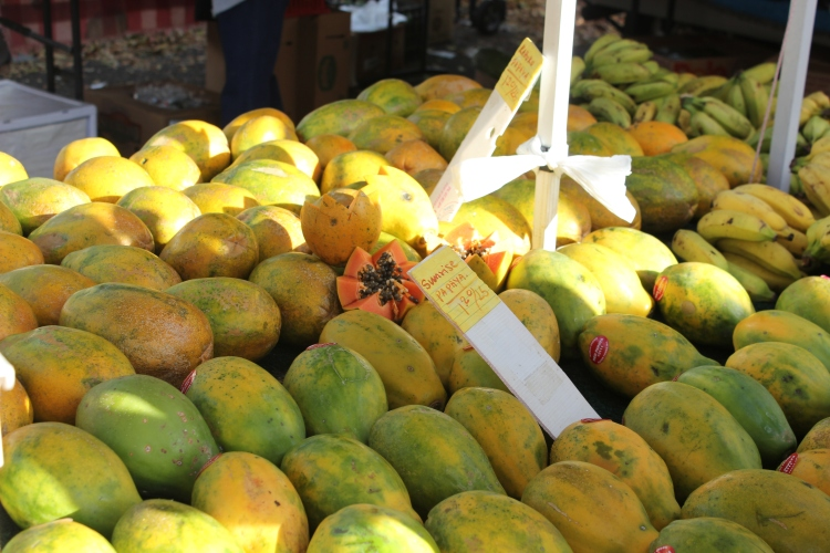 Local papayas at the KCC Farmer's Market