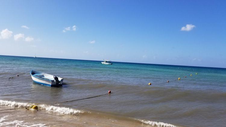 Playa Palancar, Cozumel on January 1, 2019