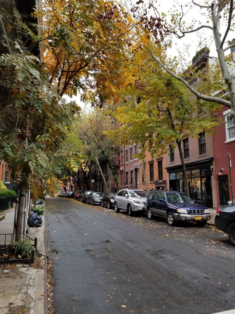 A street in Greenwich Village
