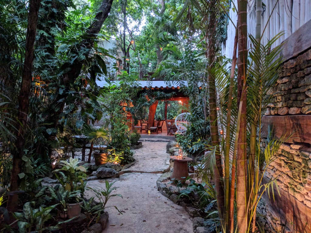 La-Semilla-Playa-Del-Carmen-Courtyard