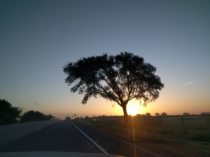 Sunrise on Hwy 290 near Lexington