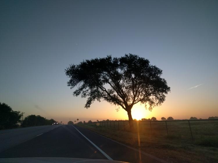 Sunrise on Hwy 290 near Lexington