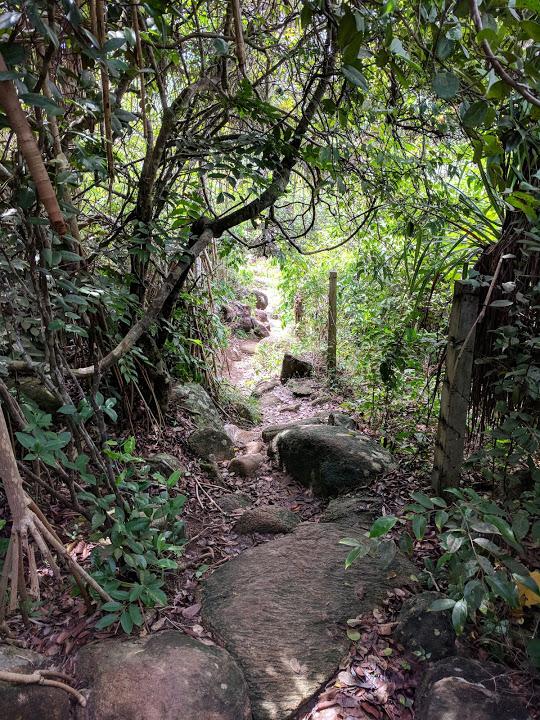 Jungle path between Jungle beach and Unawatuna beach