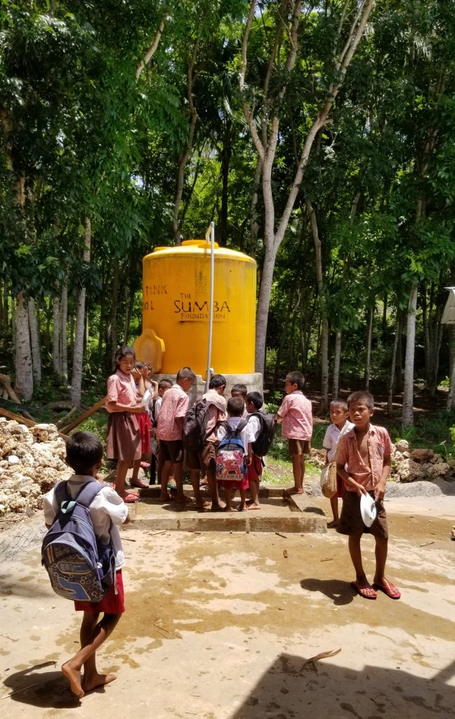Sumba Foundation Water project