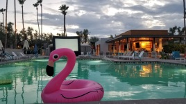 Setup for the movie by the pool at the Andaz Scottsdale