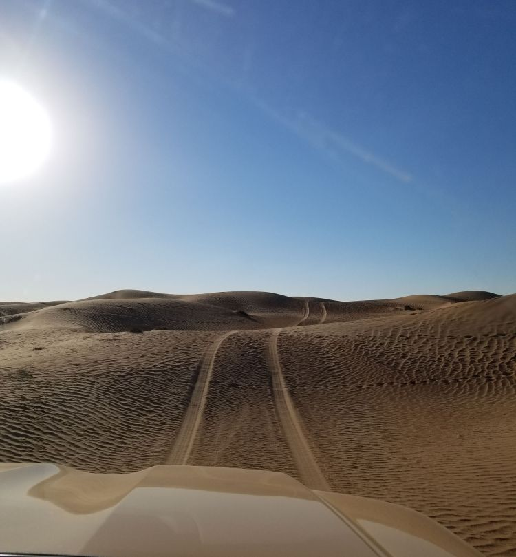 Driving through the dunes