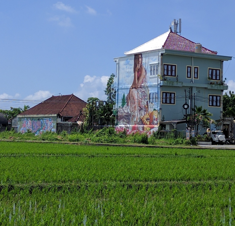 Rice field and home in Canggu