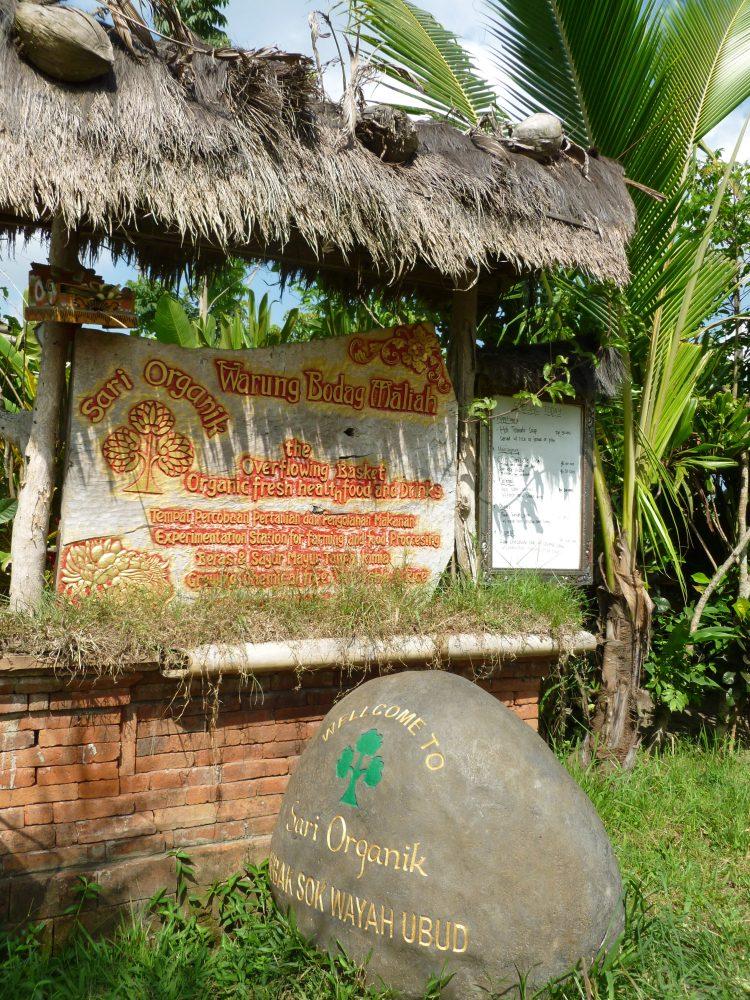 Sari Organik in Ubud