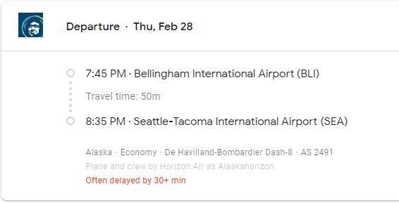 Google Flights delay info
