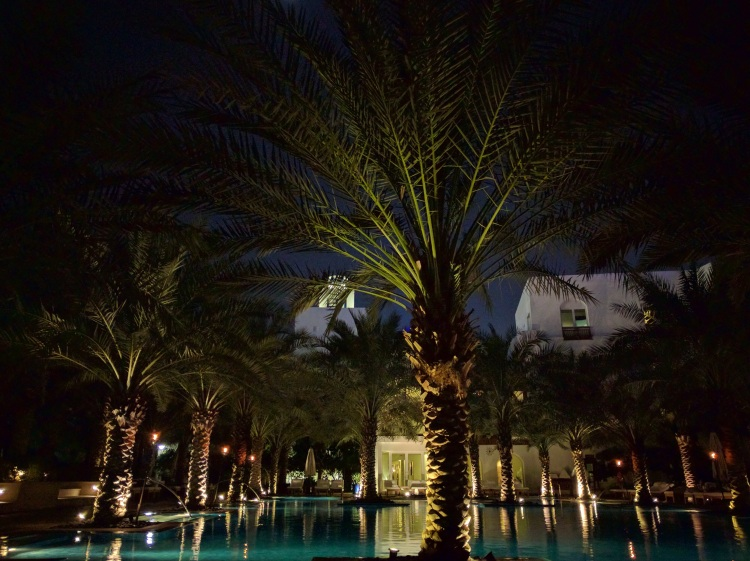 Park Hyatt Dubai Pool