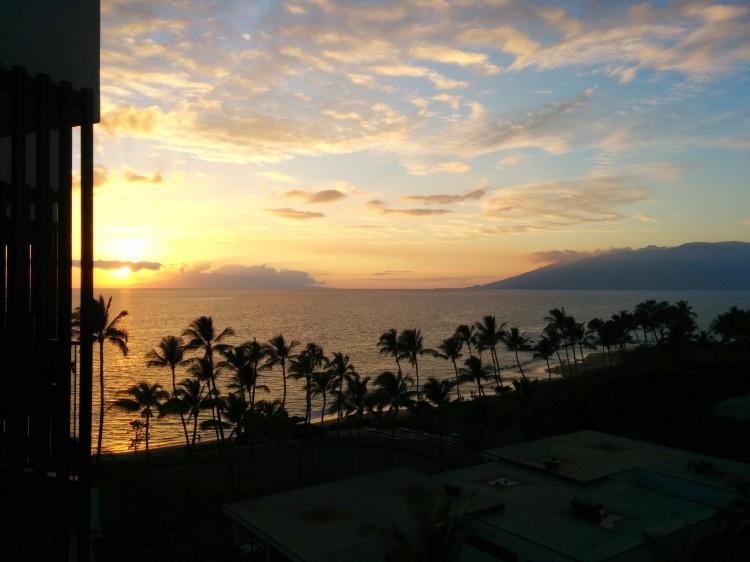 Ocean View Room Andaz Maui