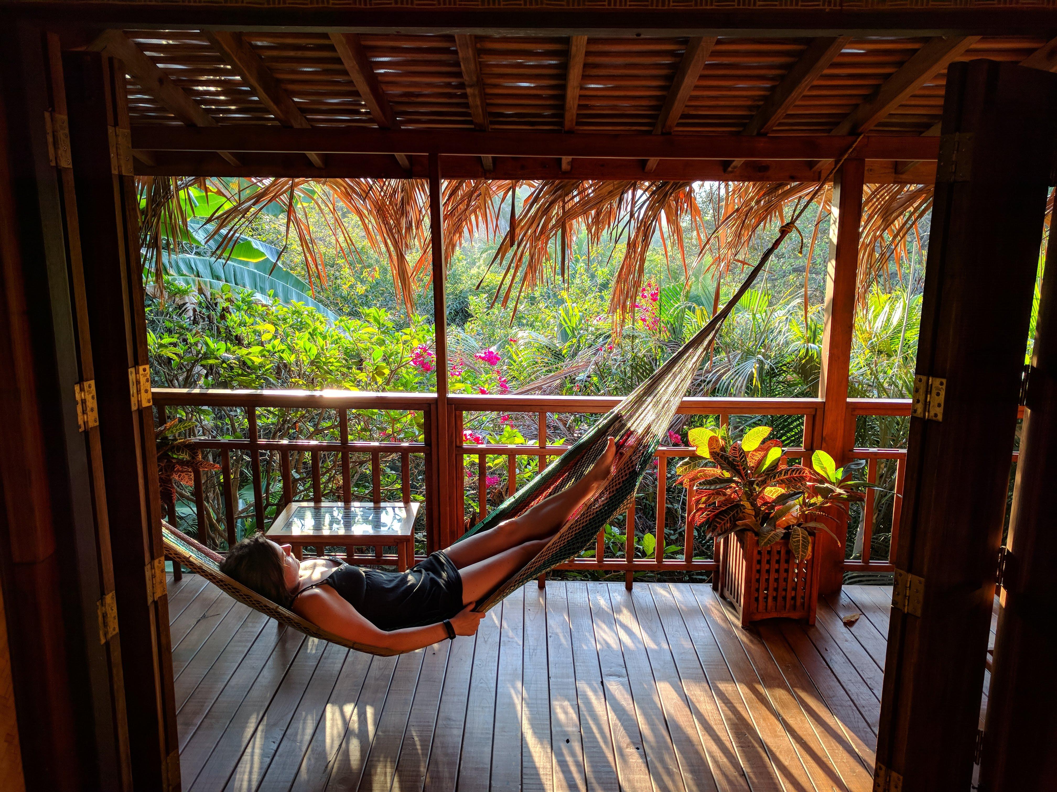 The hammock in Cenzontle