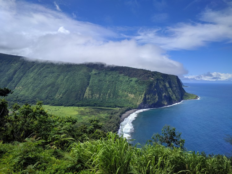 View of the Waipio Valley just down the road from the Waipio Cookhouse