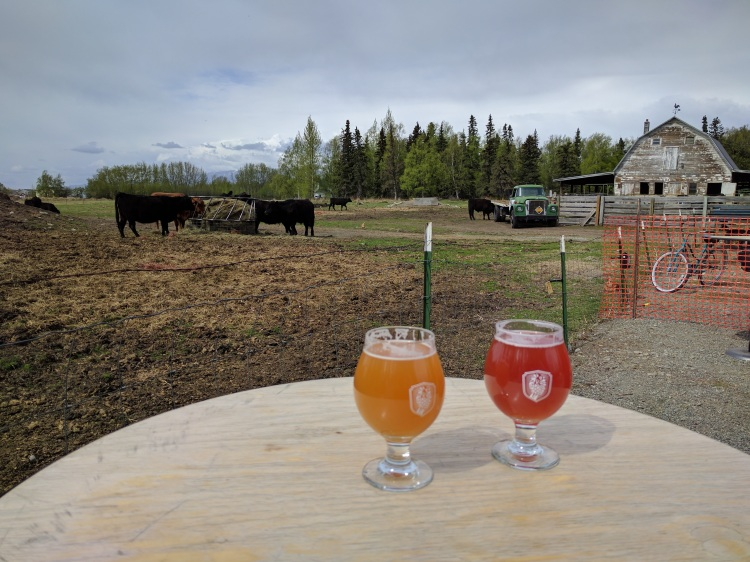 Beers at Bleeding Heart in Palmer Alaska