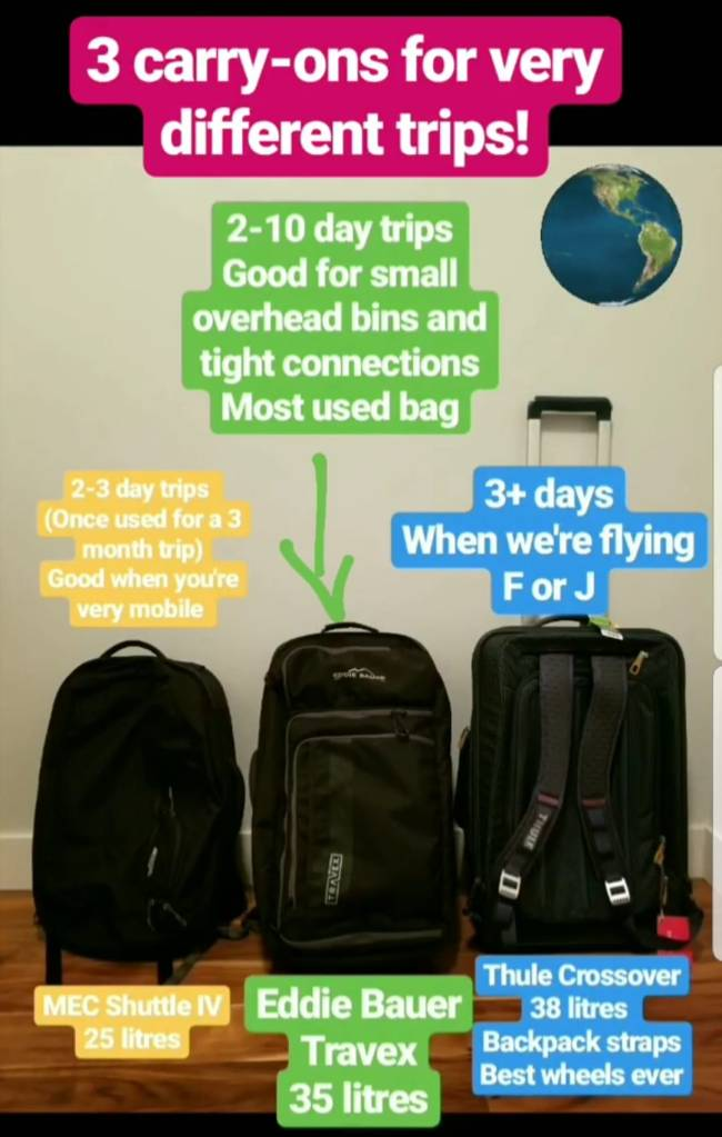 Choosing a bag: our options and picks