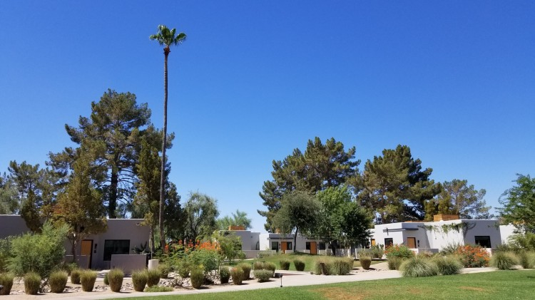 Landscaping at the Andaz Scottsdale