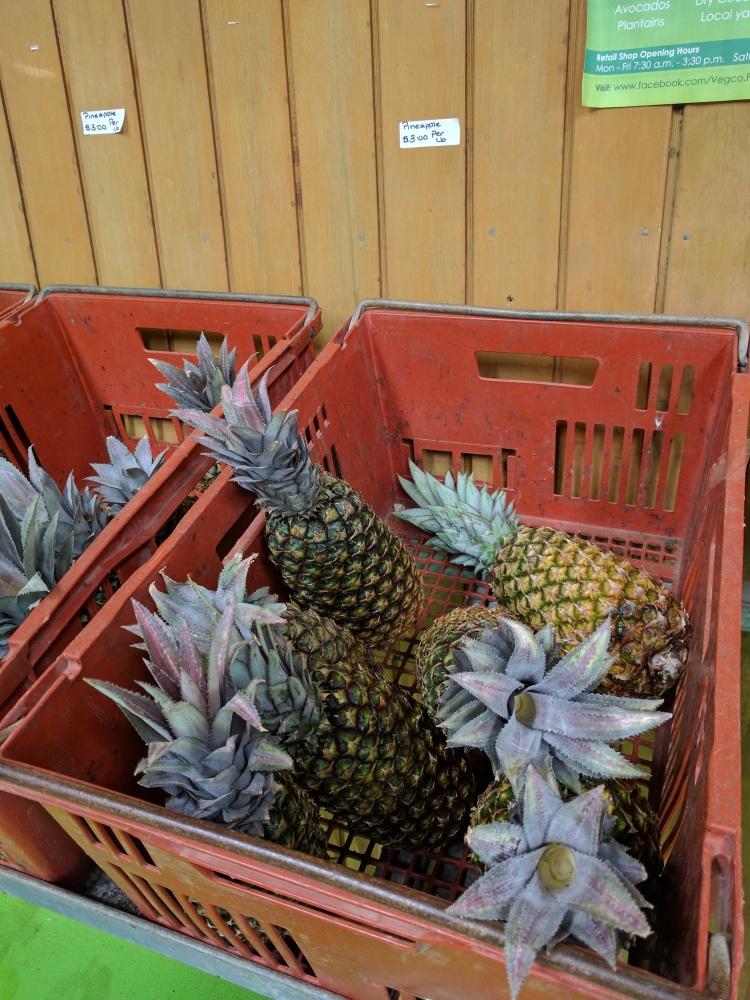 Bajan pineapple from the market