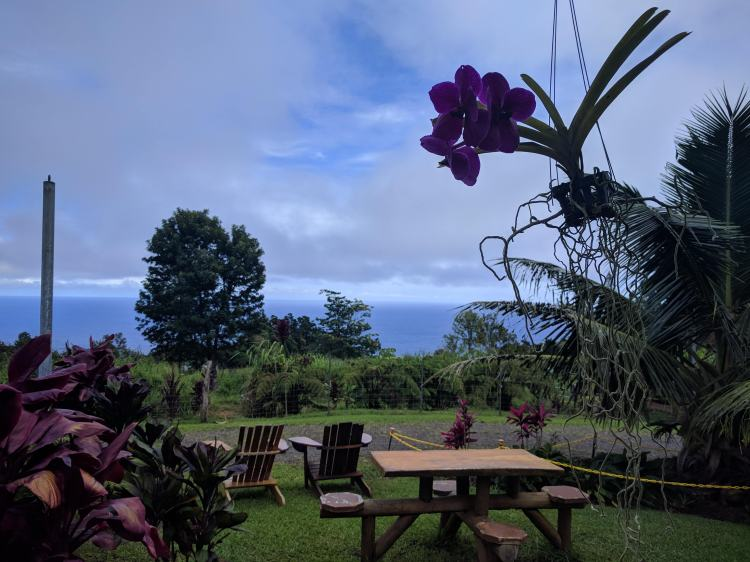 View from the outdoor dining area at the Waipio Cookhouse