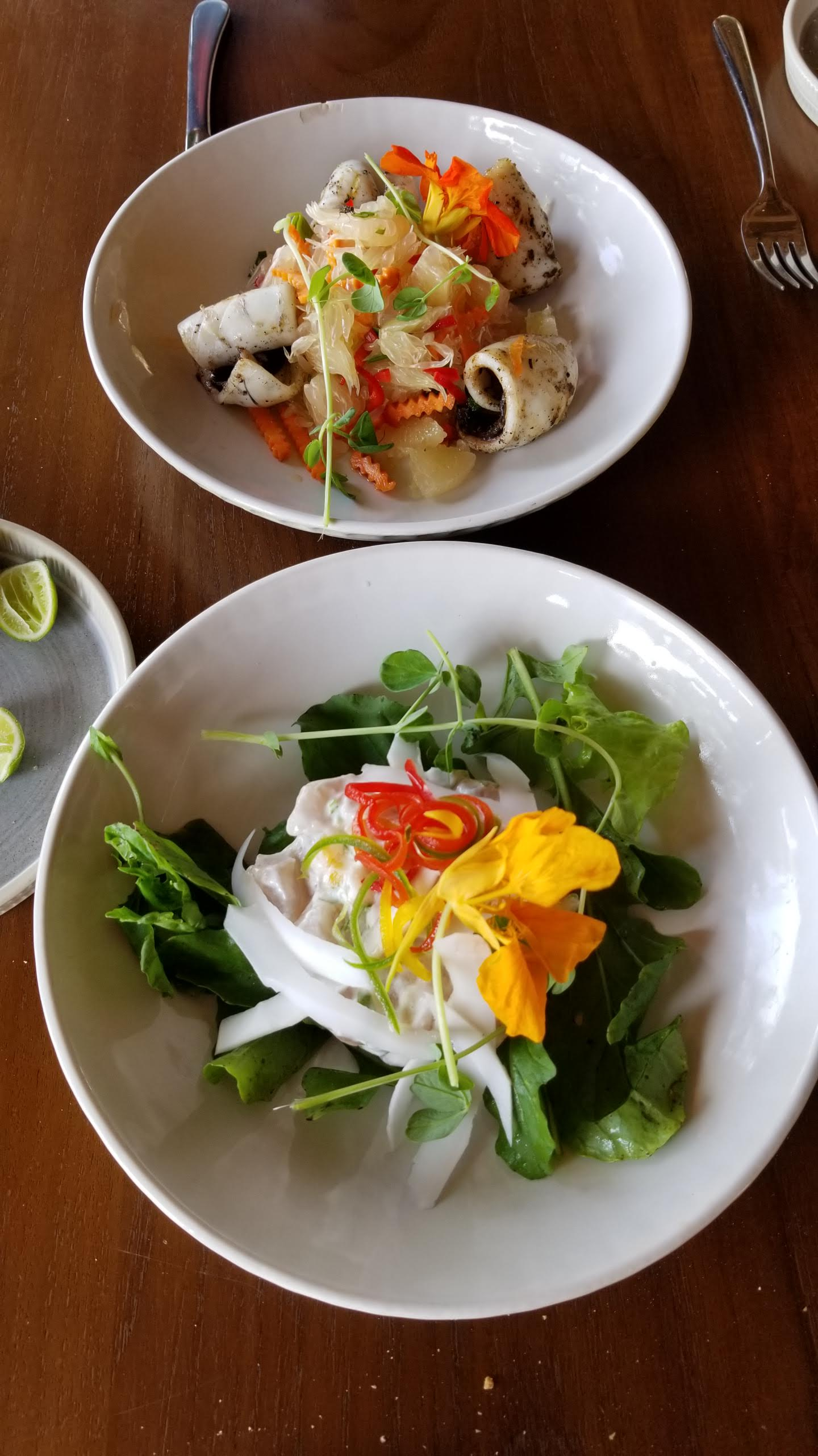 Squid salad and ceviche