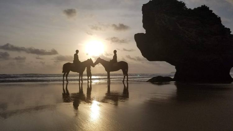 Sunset horse ride on the beach