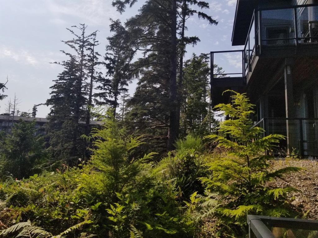 Black Rock Ocean Front Resort: Trail Studio room view from balcony
