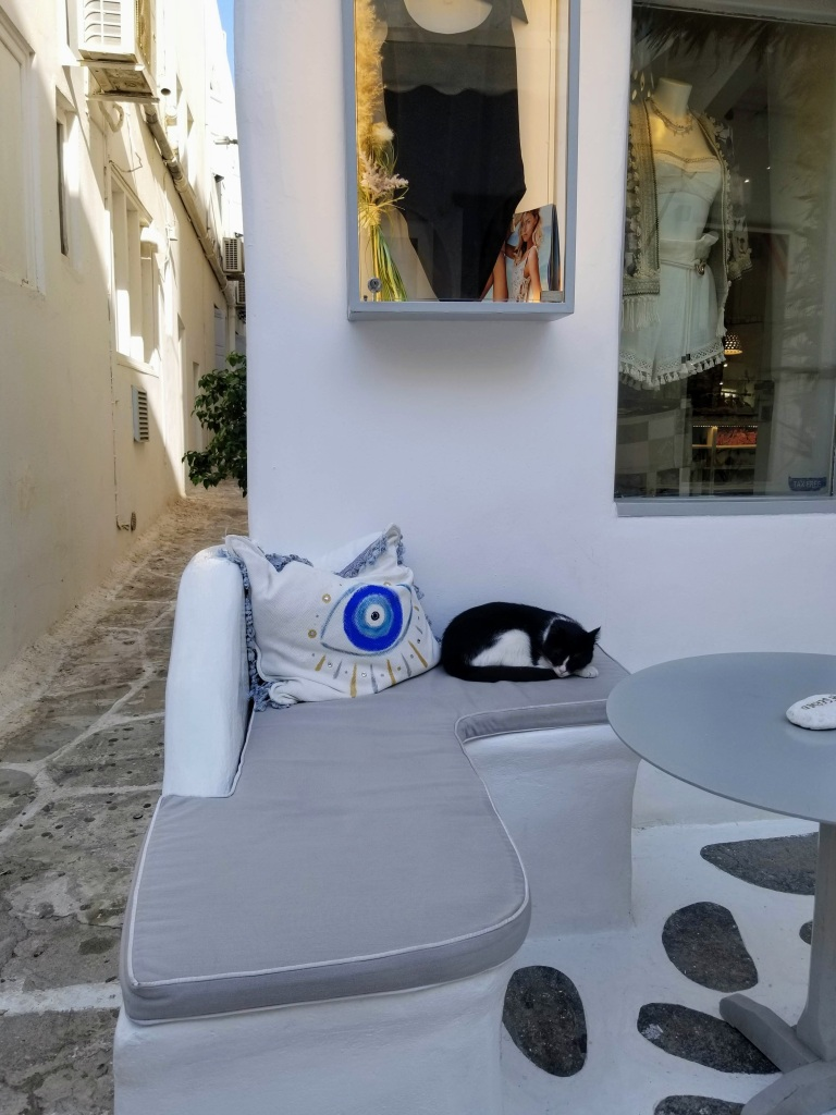 Mykonos Town: a shop and a cat napping